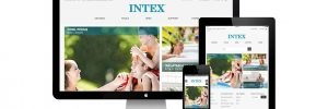 Case Studies — INTEX website and social media